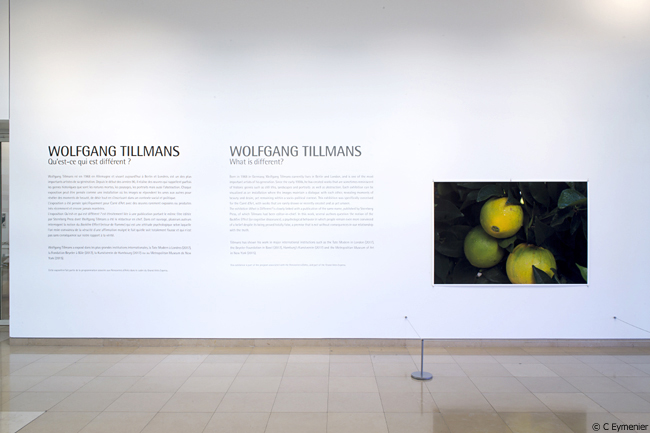 Wolfgang Tillmanscarré d'art Nîmes, 2018
